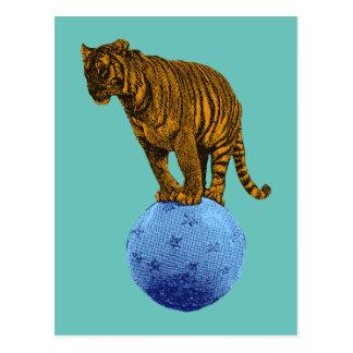 Vintage Circus Tiger Postcard