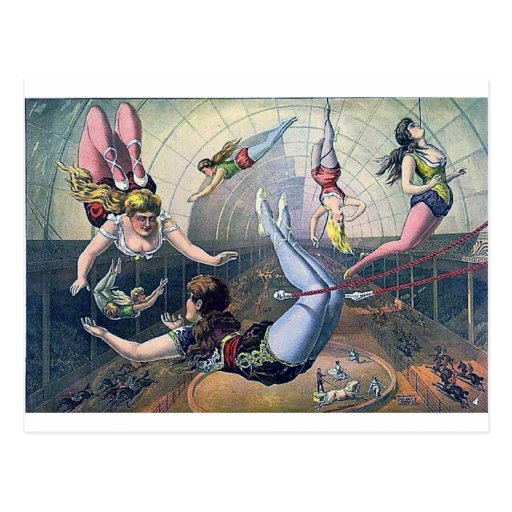 Vintage CIRCUS trapeze horses arena Post Card
