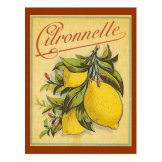 Vintage Citronnelle Ad Postcard