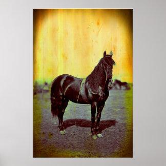 Vintage Civil War Union Horse Poster