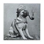 Vintage Classy Pug Photograph