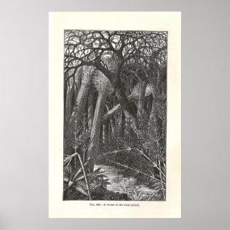 Vintage Coal Forest Poster