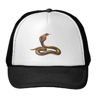 Vintage Cobra Snake Illustration Cap