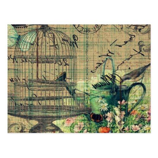 Vintage Collage w/Bird & Birdcage Garden Postcards