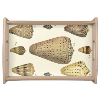 Vintage Cone Shells Serving Tray