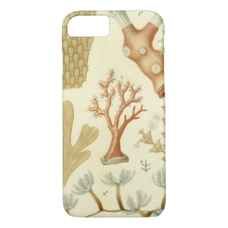 Vintage Coral Animals, Science Textbook Biology iPhone 8/7 Case