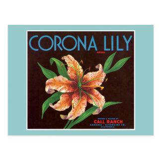 Vintage Corona Lily Fruit Label Post Card