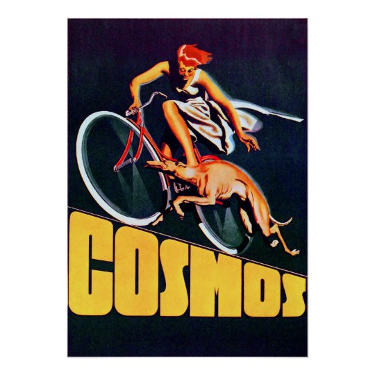 Vintage Cosmos Bicycle Poster