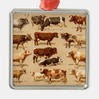 Vintage Cow Calf Bull Dairy Cows Farm Illustration Silver-Colored Square Decoration