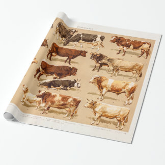 Vintage Cow Calf Bull Dairy Cows Farm Illustration Wrapping Paper