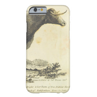 Vintage cow etching case