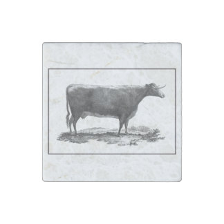 Vintage cow etching magnet stone magnet