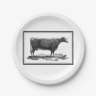 Vintage cow etching with borders paper plate 7 inch paper plate