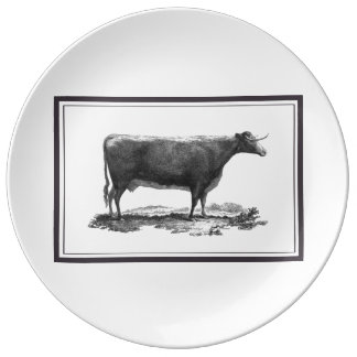 Vintage cow etching with borders plate