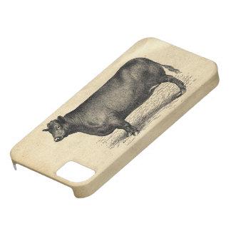 Vintage Cow on Parchment Case iPhone 5 Covers