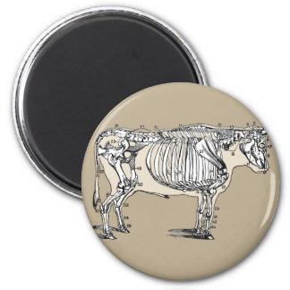 Vintage Cow Skeleton 6 Cm Round Magnet