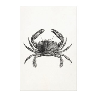 Vintage Crab Antique Crabs Personalized Template Stretched Canvas Print