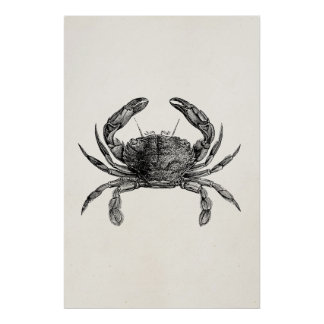 Vintage Crab Antique Crabs Personalized Template Poster