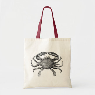 Vintage Crab Drawing