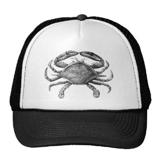 Vintage Crab Drawing Cap