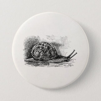 Vintage Crawling Snail Antique Template 7.5 Cm Round Badge