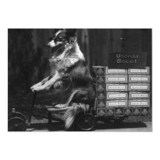 Vintage Crazy Dog Riding Wagon Photo 13 Cm X 18 Cm Invitation Card