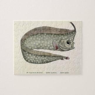 Vintage Crested Oarfish Fish, Marine Aquatic Life Puzzles