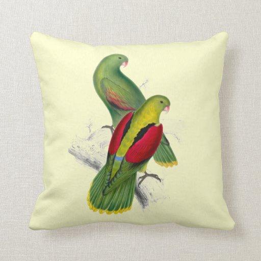 Vintage Crimson Winged Parakeet Throw Pillow