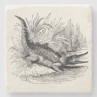 Vintage Crocodile - Reptile Template Blank Stone Coaster