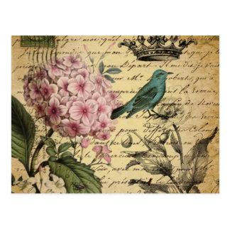 Vintage crown botanical art hydrangea french bird postcard