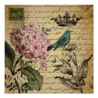 Vintage crown botanical art hydrangea french bird poster
