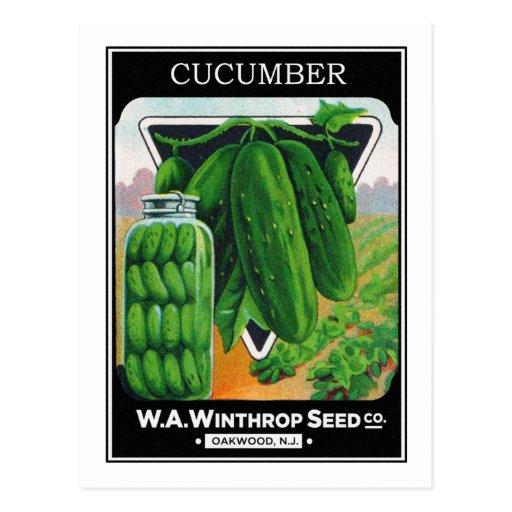 Vintage Cucumber Seed Package Label Post Cards