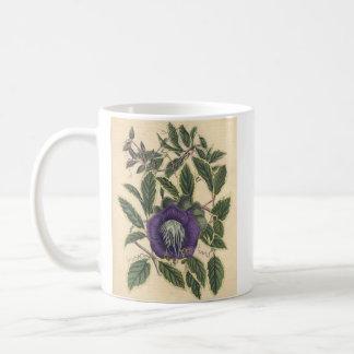 Vintage Cup and Sauce Vine Basic White Mug