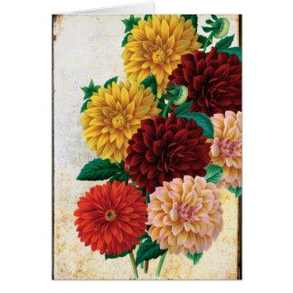Vintage Dahlias Card