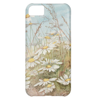 Vintage Daisies In A Field Easter Card iPhone 5C Case