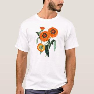 Vintage Daisy - Gazania Splendens T-Shirt