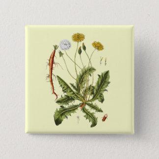 Vintage Dandelion Illustration 15 Cm Square Badge