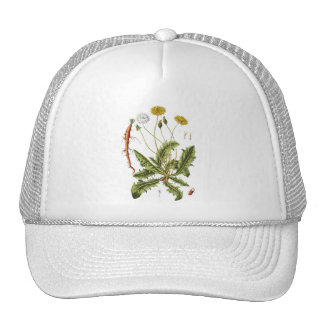 Vintage Dandelion Illustration Trucker Hats
