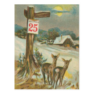 Vintage December 25th Deer Postcard