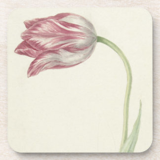 Vintage design with a pink and white tulip beverage coasters