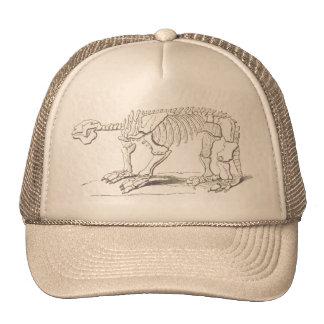 Vintage Dinosaur Bones Hat