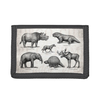 Vintage Dinosaur Old Illustration Retro Dinosaurs Trifold Wallets