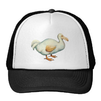 Vintage Dodo Illustration Hats