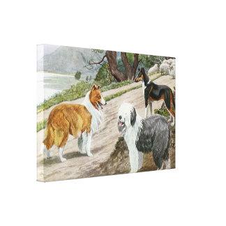 Vintage Dog Lovers Art Collie Trio Canvas Print