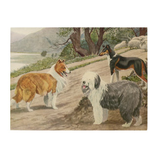 Vintage Dog Lovers Art Collie Trio Wood Prints