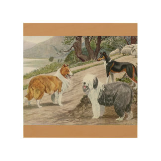 Vintage Dog Lovers Art Collie Trio Wood Print