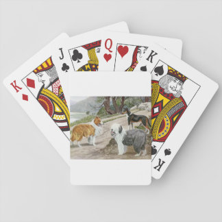 Vintage Dog Trio Poker Deck
