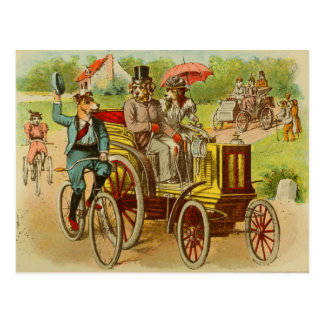 Vintage Dogs Riding Bikes and Cars Postcard