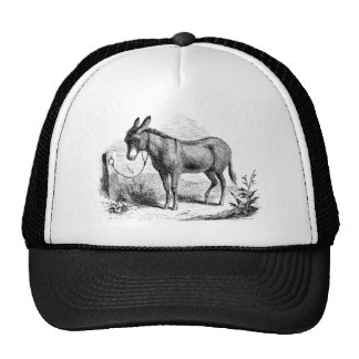 Vintage Domestic Donkey Personalized Retro Donkeys Cap