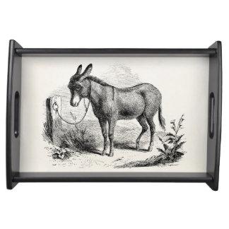 Vintage Domestic Donkey Personalized Retro Donkeys Serving Tray